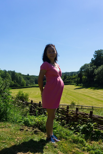 Simplicity 1469 Megan Nielsen Amber maternity dress