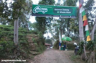 Pintu Masuk Wisata Alam Capolaga Adventure Camp Subang