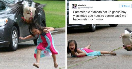 Pequeña es atacada por un ganso y su hermana lo vuelve viral