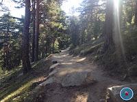 camino schmid