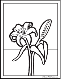 Lilies Coloring 9