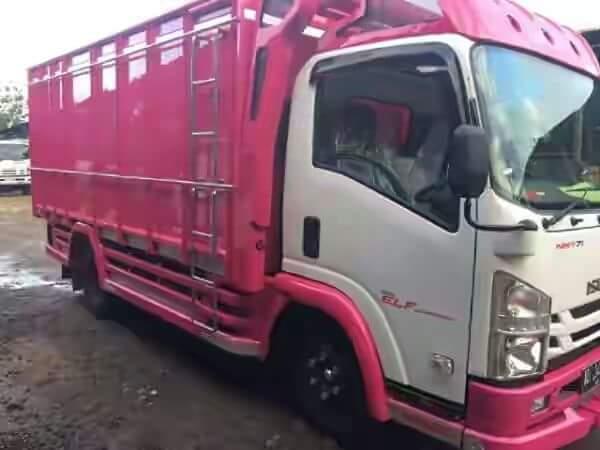 Kendaraan Isuzu Jenis Colltsel Terbaru Dengan Kapasitas Ps  Ban Dan Terlaris Di Kelasnya Dengan Kabin Yang Luas Dan Fitur Fitur Yang Lengkap