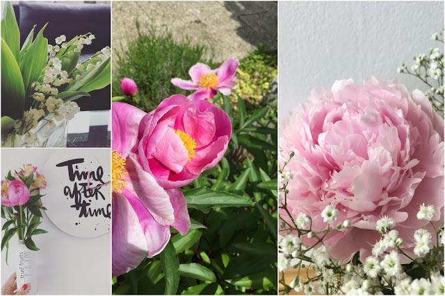 Gartenfunde Pfingstrosen Maigloeckchen DIY Tipps Balkon und Garten Blumen Jules kleines Freudenhaus
