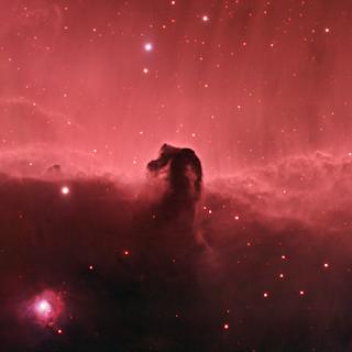 Nebulosa Cabeça de Cavalo | Blog Mente Viajante