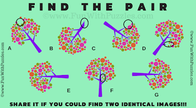 Answer of Test your Brain Picture Puzzle