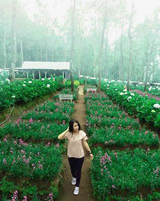 Spot Taman Bunga Coban Talun