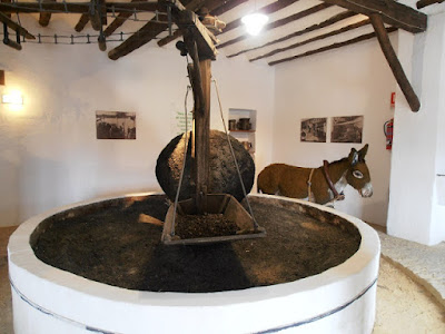 Olive Oil Museum, Baeza, Jaen