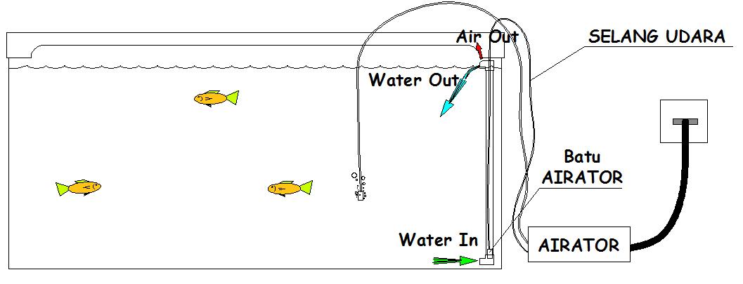 Keindahan Akuarium Dan Penghuninya Sirkulasi Air Sederhana