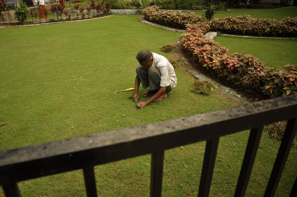 Man in India working on a lawn near the Flora Fountain in India.