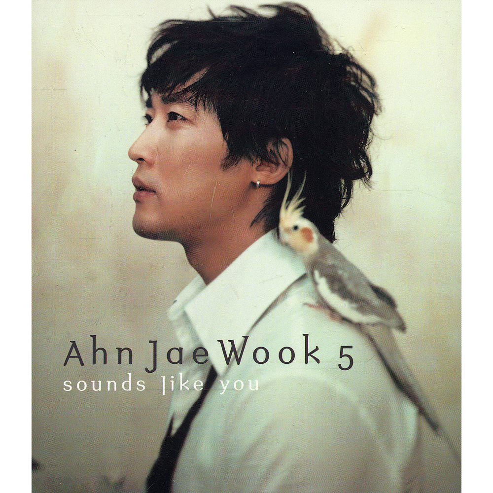 Ahn Jae Wook – Vol.5 Sounds Like You