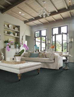 Living room with muted blue carpet