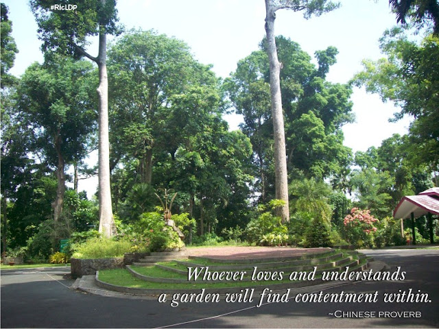 Whoever loves and understands a garden will find contentment within.