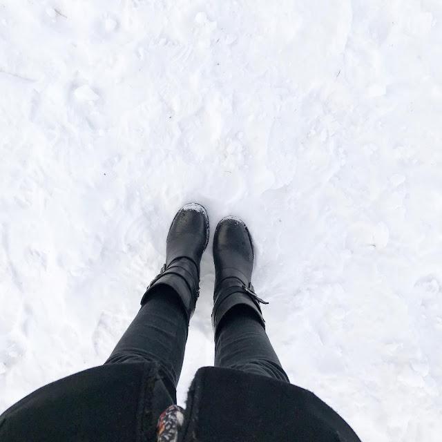 Le Mont Salève en hiver