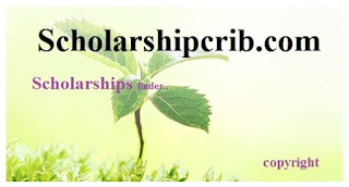 University of Technology Sydney Scholarship