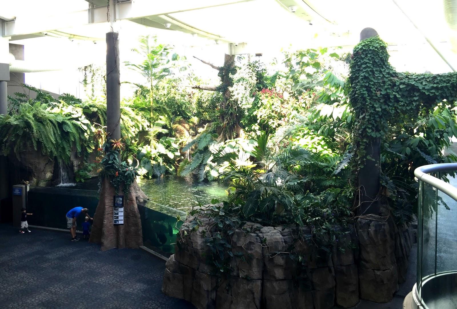 Pittsburgh Zoo & PPG Aquarium: Pittsburgh is Kidsburgh