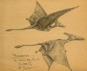 "two ""pterodactyls"" observed by the U.S. Marine Eskin C. Kuhn"