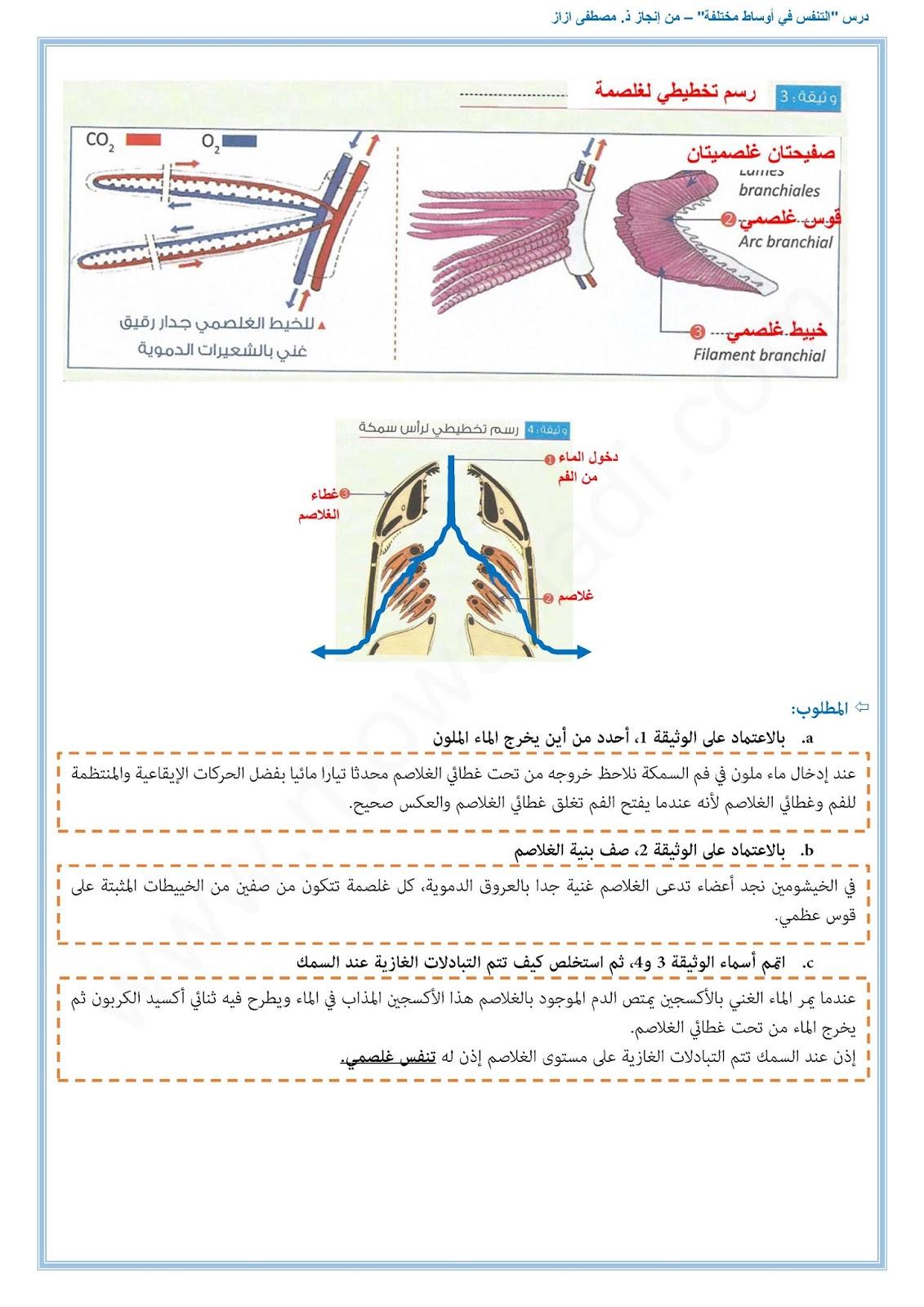 التنفس في أوساط مختلفة7