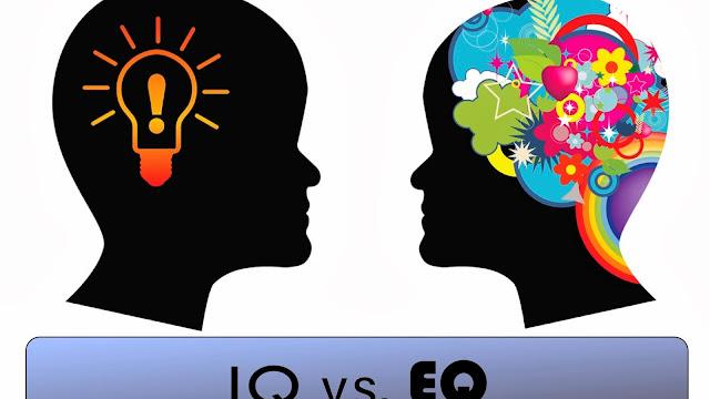 IQ ve EQ Üzerine Bir Yazı