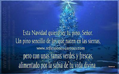Señor esta Navidad quiero ser tu pino - Reflexiones navideñas