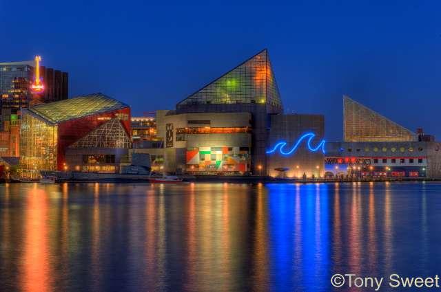 You Should Probably Read This Baltimore Aquarium Tickets