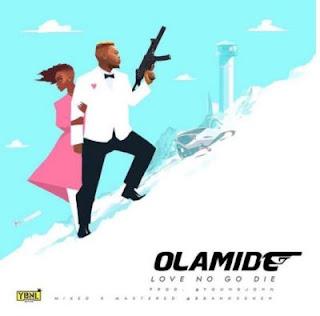 Olamide Love No Go Die Art