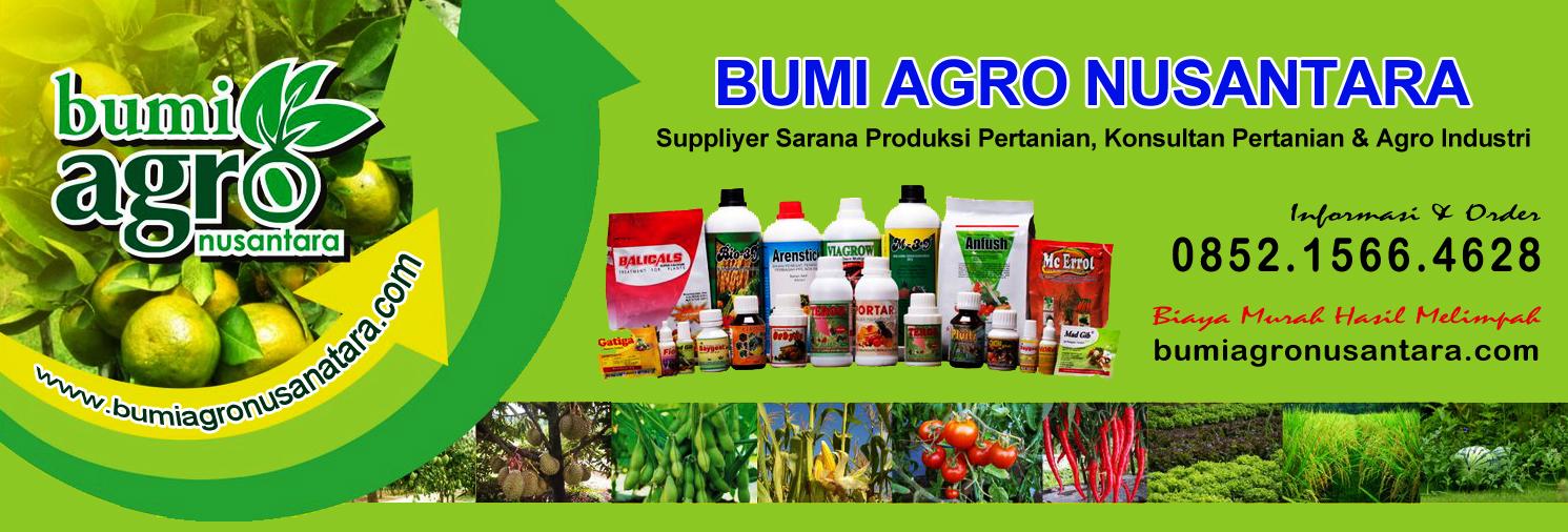 Agen Pertanian Bumi Agro Nusantara | Solusi Hasil Pertanian Melimpah 0812-4930-3003