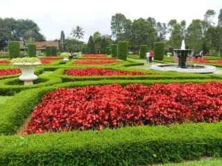 Villa murah di lembang dekat taman bunga begonia