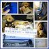 飛行體驗 - ANA全日空 香港到東京成田 + 海鮮特別餐