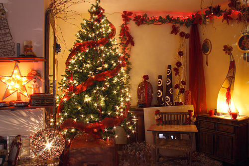 Amy's Daily Dose: Decorating For Christmas On A Budget