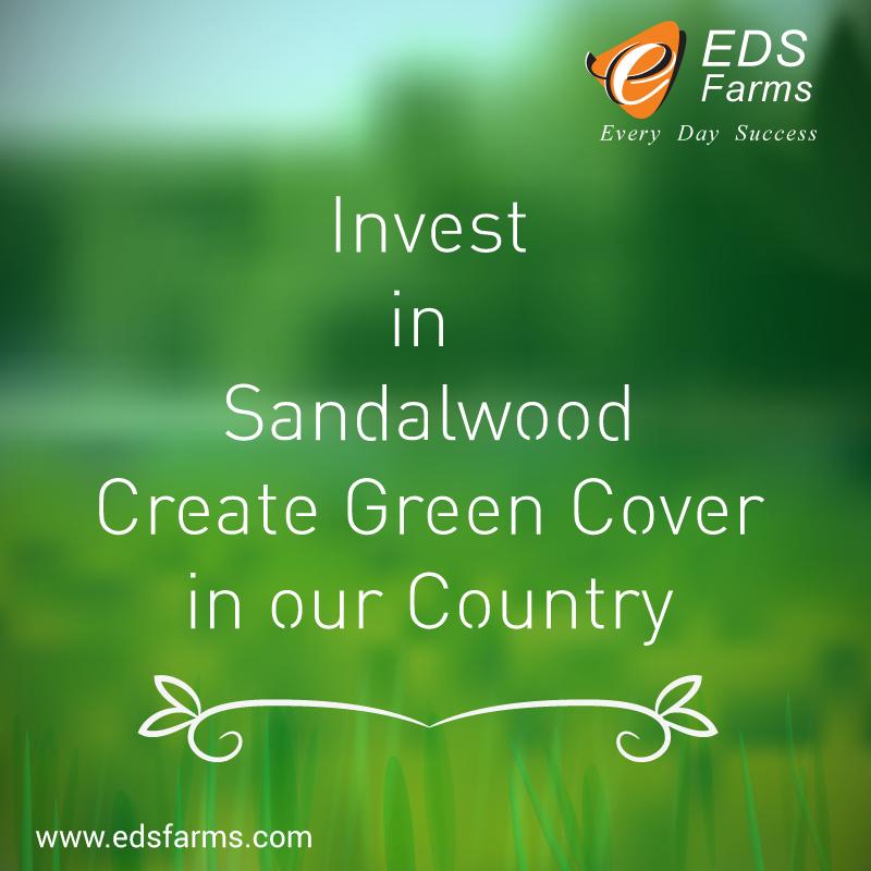 Sandalwood Farms