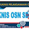 Juknis Pelaksanaan OSN SD Tahun 2019
