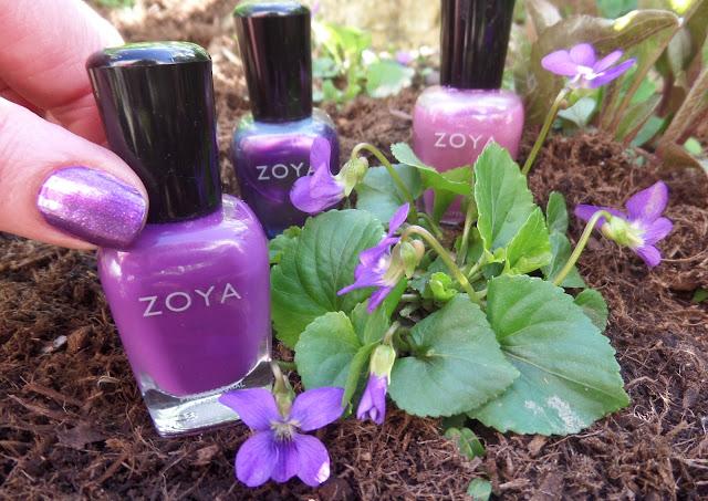 zoya violets