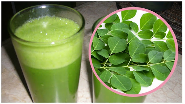 8 Health Benefits Of Drinking Moringa (Malunggay) Juice Everyday!