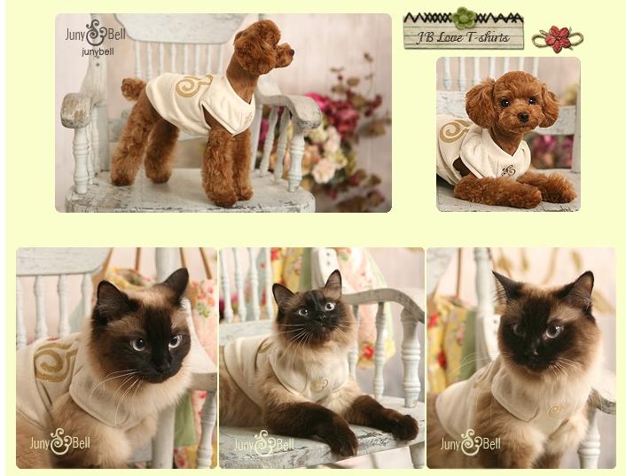 O Dog Hairstyle: Korea Dog Clothes Style