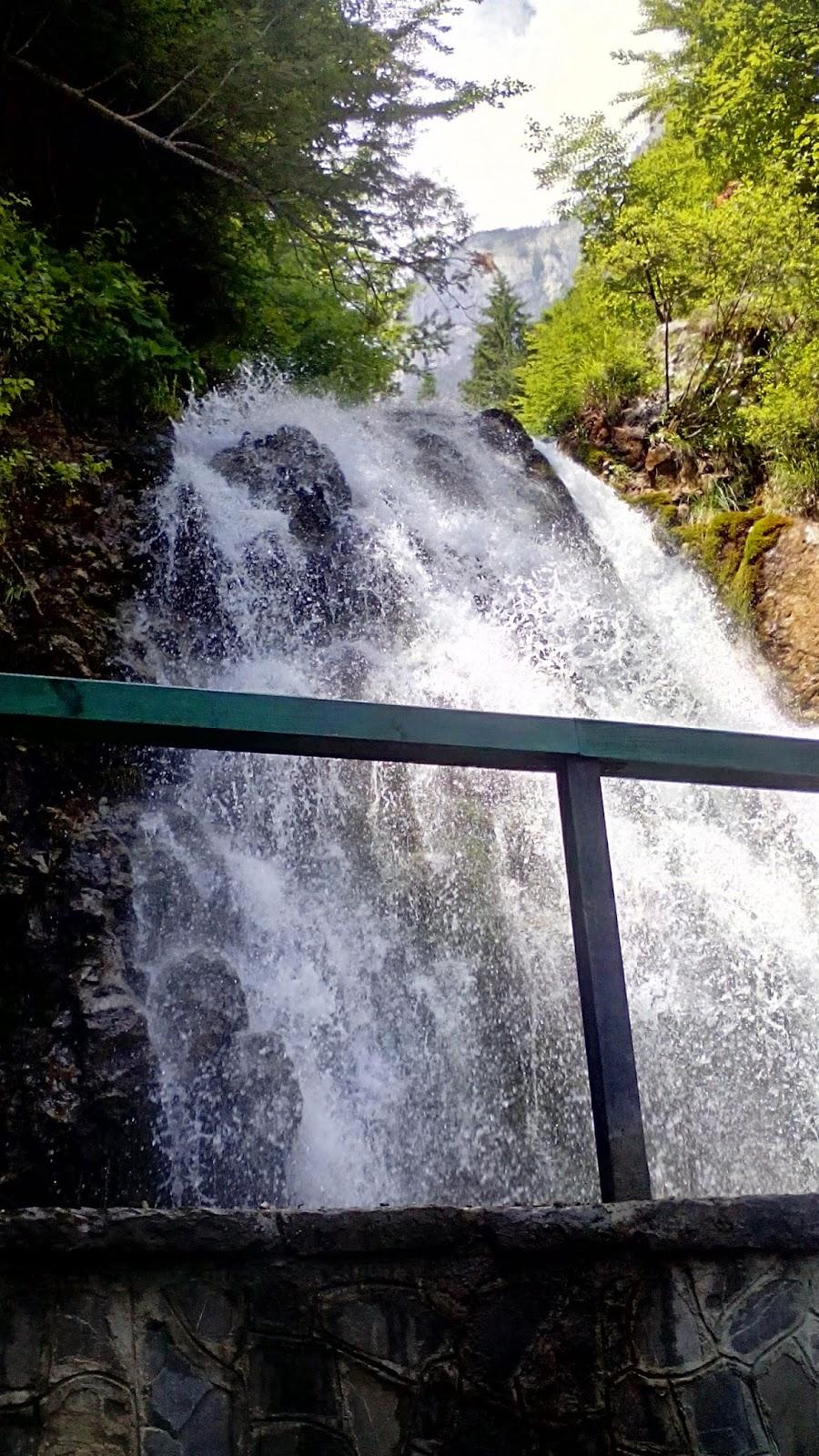 Cascada Urlatoare