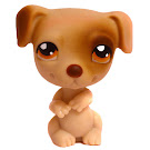 Littlest Pet Shop 3-pack Scenery Jack Russell (#109) Pet