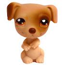 Littlest Pet Shop 3-pack Scenery Jack Russell (#109) Pet