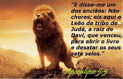 Mensagens Biblicas Evangelicas: Frases De Trechos Da Bíblia Para Facebook