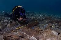 Una pieza de madera labrada, hallada entre los cimientos de una columnata, ha permitido fechar los hallazgos entre el 520 y el 480 a.C.