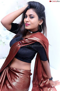 Priya Augustin in saree amazing cute beauty hq .xyz Exclusive Pics 002