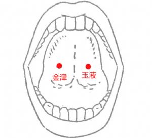 金津穴位 | 金津穴痛位置 - 穴道按摩經絡圖解 | Source:big5.wiki8.com