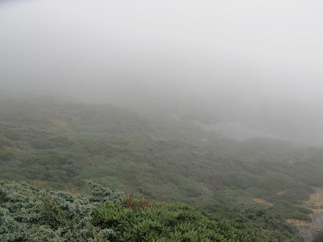 IMG 5960 - 台中登山│台灣第二高峰,雪山主峰、東峰兩天一夜攻頂!這兩天是我最難熬的一夜