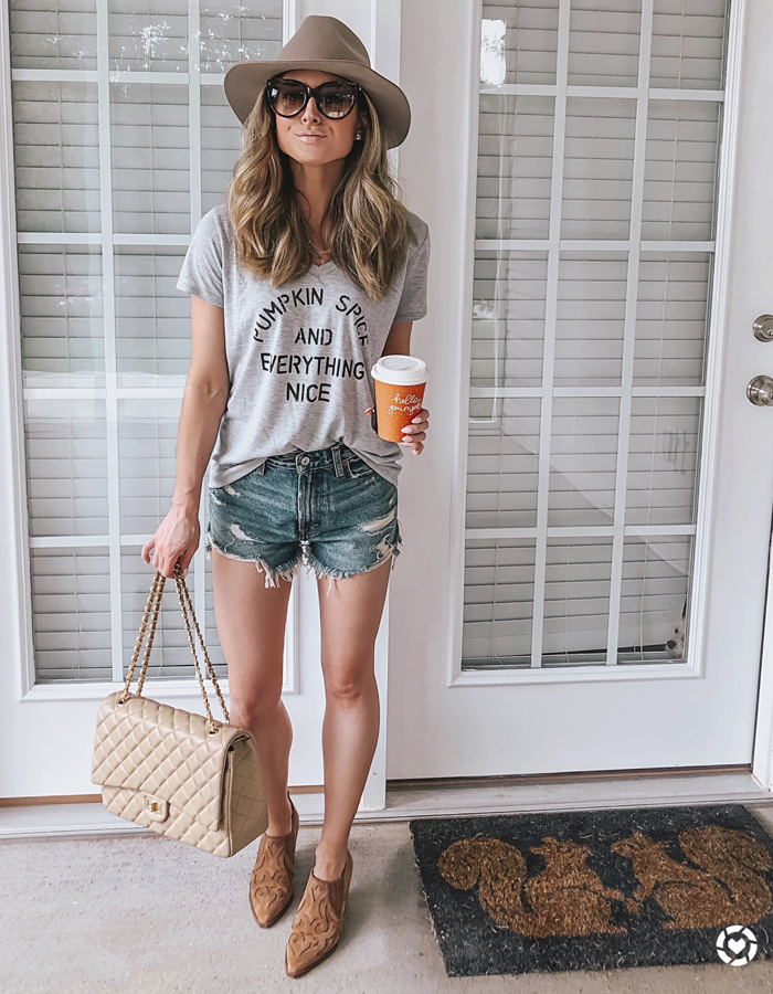 target pumpkin spice and everything nice tee