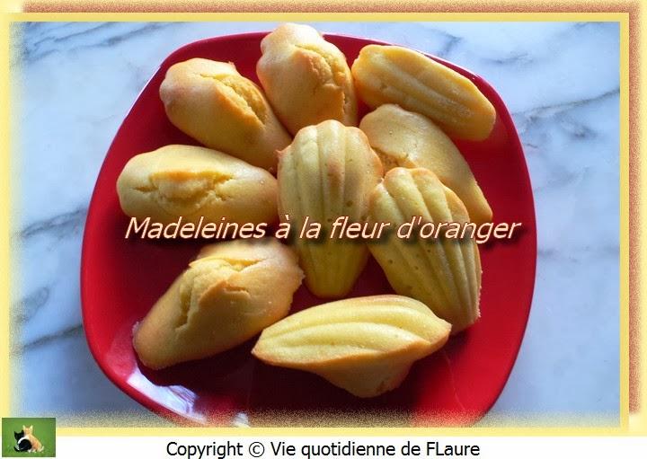 Vie quotidienne de FLaure: Madeleines à la fleur d'oranger