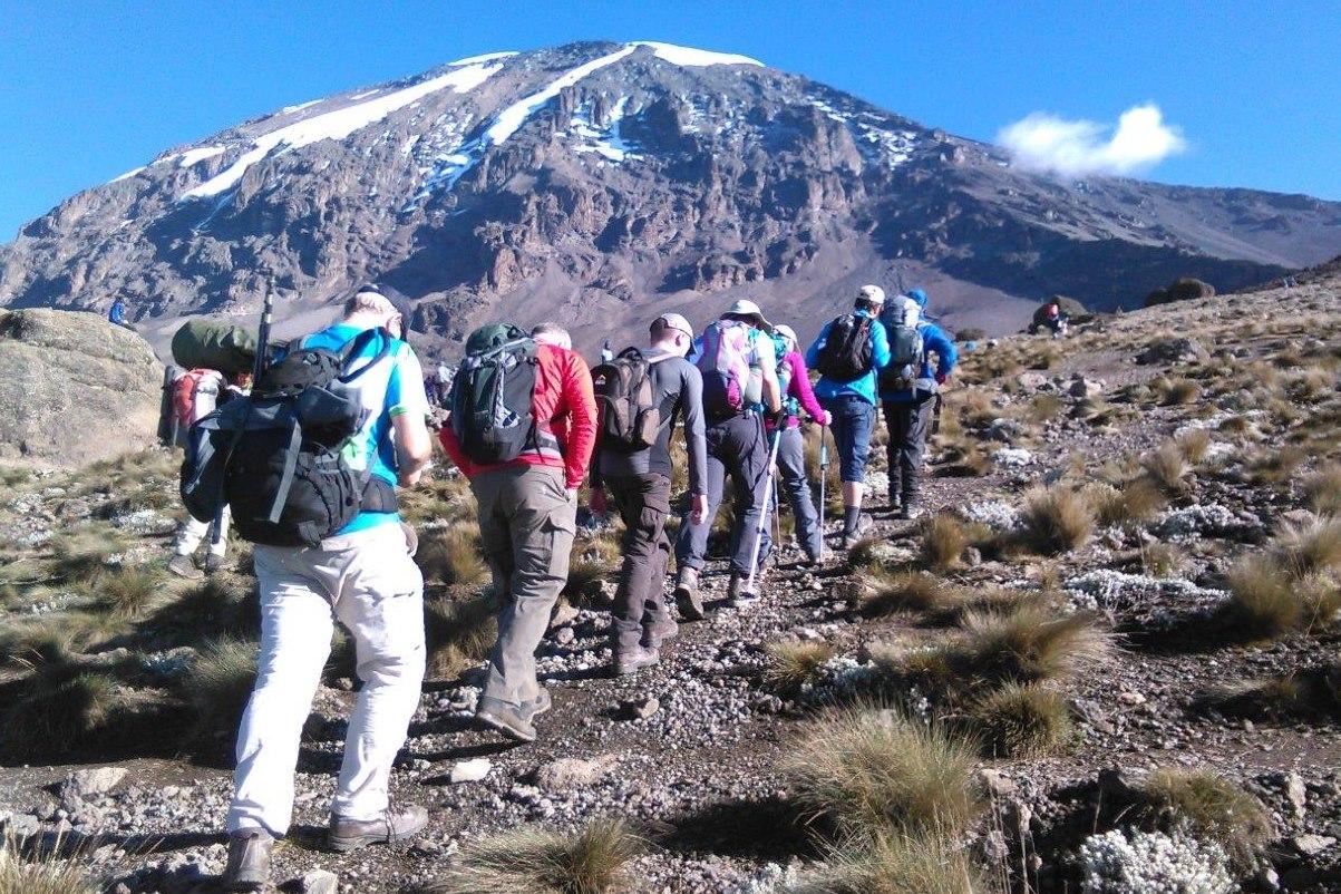 Elbrus Russia and Kilimanjaro Tanzania climbing trips