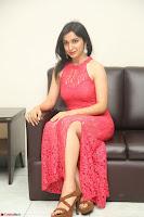Sakshi Kakkar in Red Legsplit Sleeveless Gown at Dare movie Press meet ~  Exclusive 032.JPG