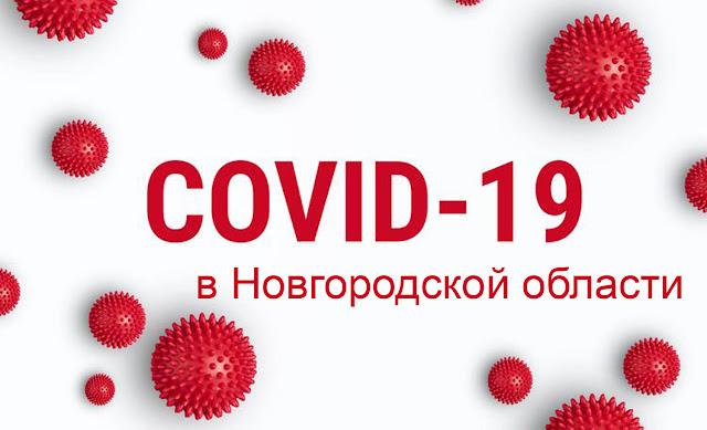 Коронавирус в Новгороде и Новгородской области