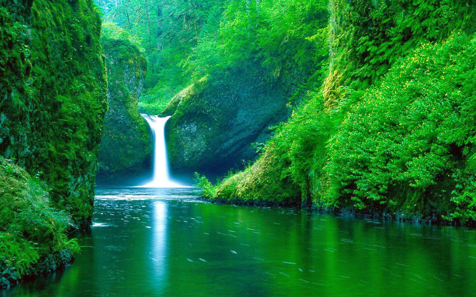 Wallpapers water falls wallpapers - Aquatic wallpaper ...