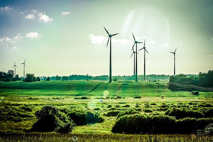 17 Ideas para iniciar negocios relacionados con el Medio Ambiente