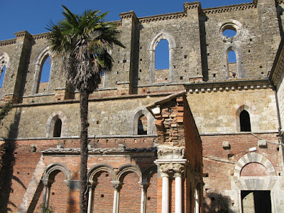 San Galgano abbey, ruin of cloister, side entree and palm tree